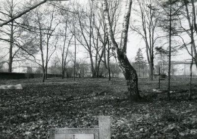 Część cmentarza ewangelickiego.